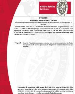 Veritas certificate